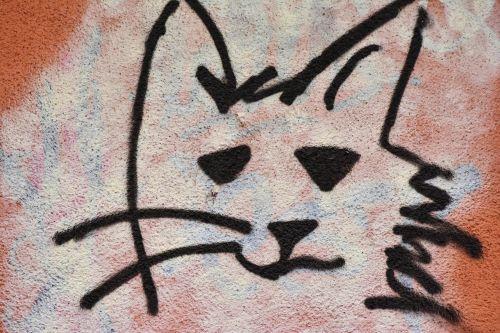 grafiti,katė,Hauswand,gatvės menas,purkšti,dažytos sienos,kačių veido,dažytos,tinkas