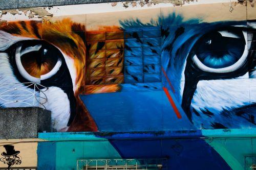 graffiti tiger cat