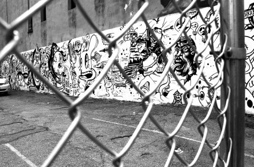 graffiti wire mesh fence black and white