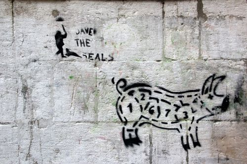 grafitti pig hauswand