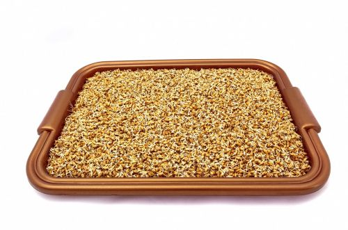 grains wheat sprouted grains