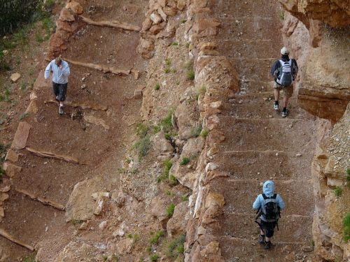 grand canyon trail migratory path