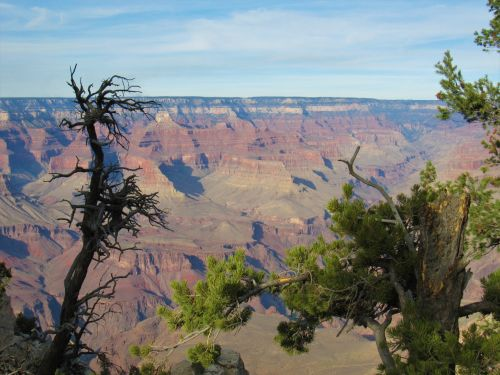 Grand Canyon Scenic, South Rim