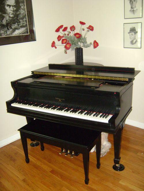 grand piano instrument keyboard