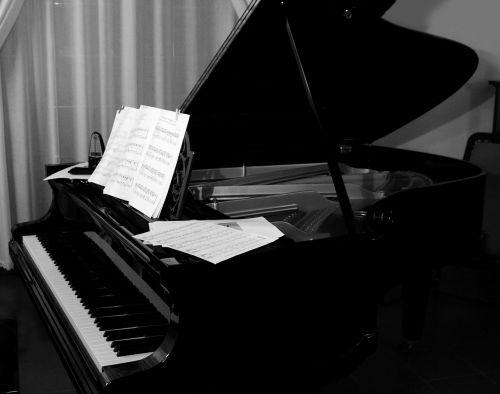 grand piano plan keyboard