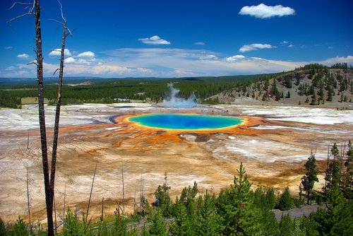grand prismatic from overlook  thermal  spring