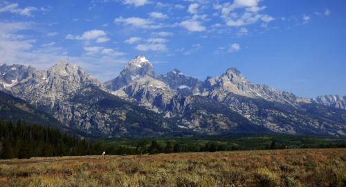 didieji tetonai,kalnai,Nacionalinis parkas,Vajomingas,gamta,tetonas,kraštovaizdis,parkas,grand,piko,vaizdingas,nacionalinis,epinis