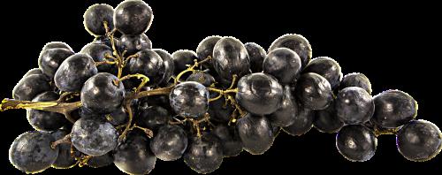 fruit grapes png