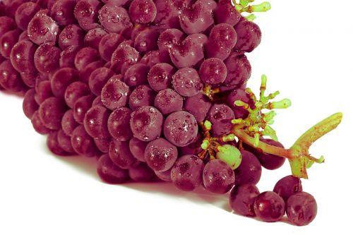 grape red grape fruit