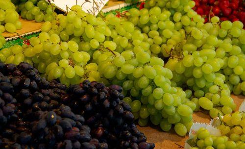 grape vine fruit
