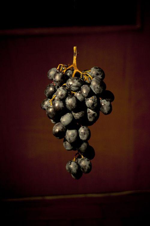 grapes fruit food