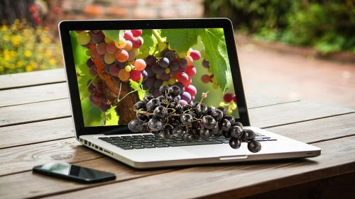 grapes fruit computer