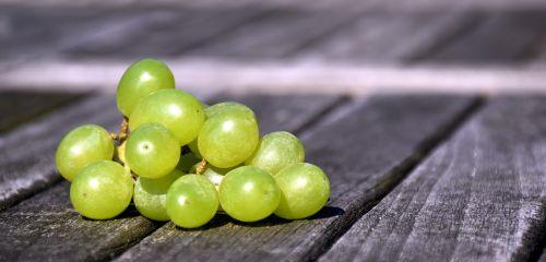 grapes wine vine