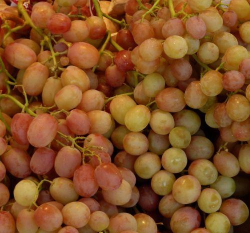 grapes sweet fruit