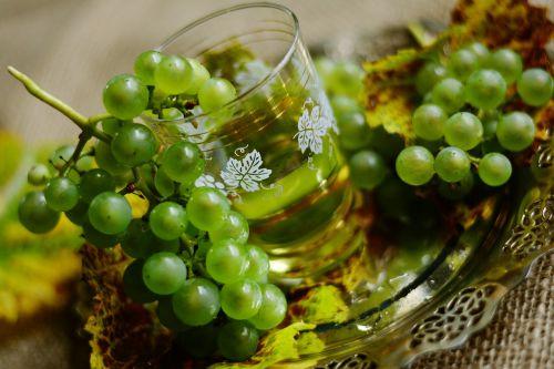 grapes wine white wine