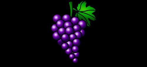 grapes fruit cluster