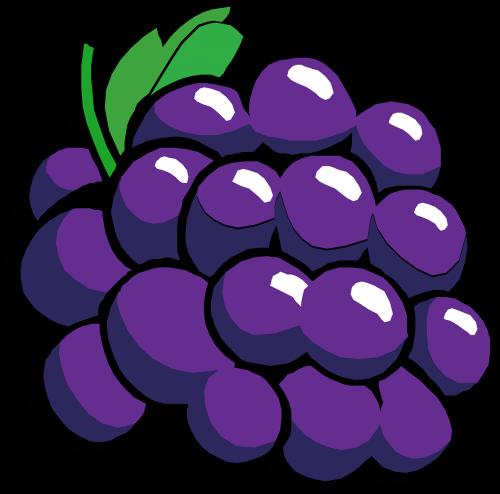 vynuogės,raudona,vaisiai,maistas,šviežias,sultingas,nemokama vektorinė grafika
