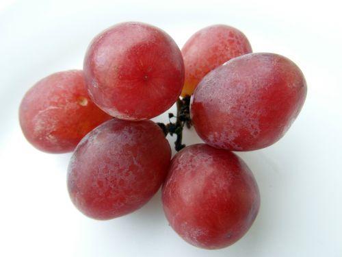 grapes red frisch