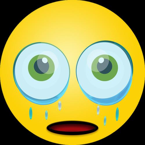 graphic  sad smiley  emoticon