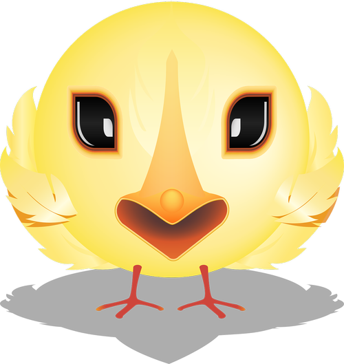 graphic  chick smiley  smiley