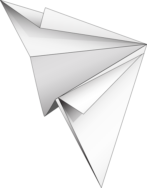 graphic  paper airplane  paper