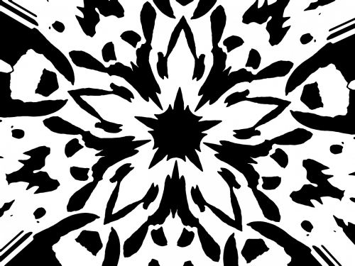 Graphic Flower - Poster