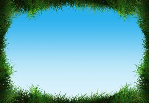 grass rush green