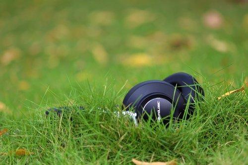 grass  head phones  black