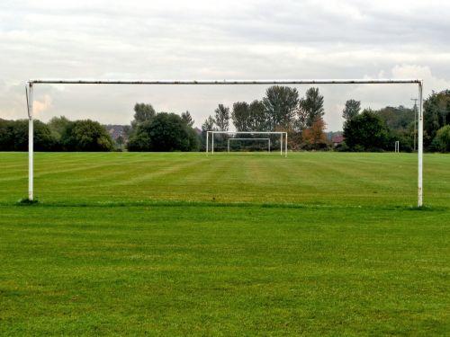 grass the pitch goals