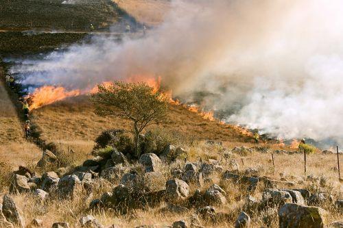 grass fire firefighter smoke