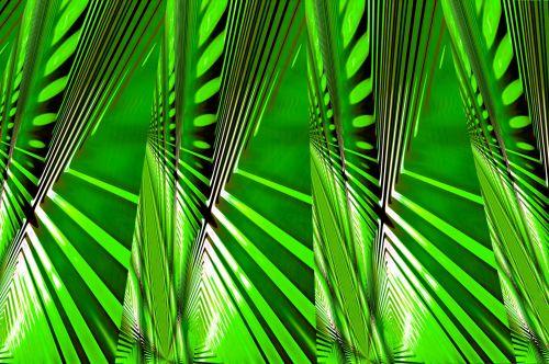 Grasshopper Departure Pattern