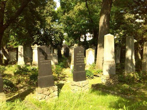 grave stones graves magdeburg