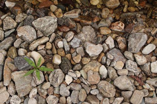 gravel leaf pool