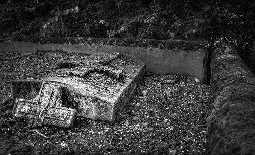 graveyard graves tree