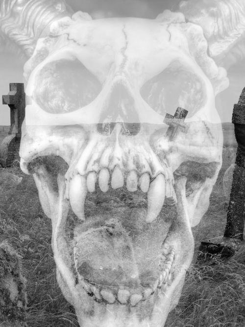 Graveyard Skull