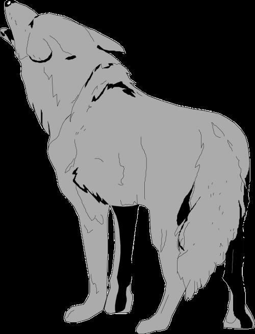 gray animal tail