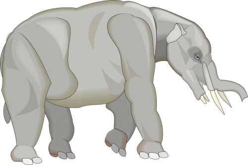 gray elephant animal