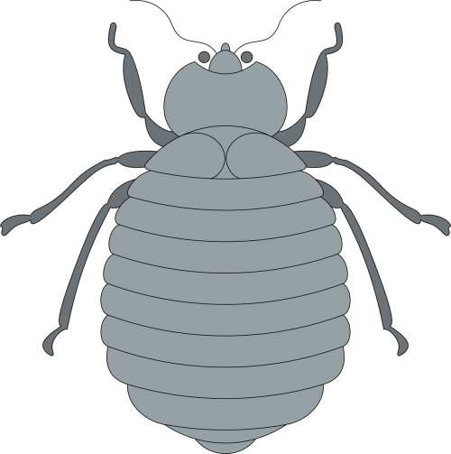 gray top view