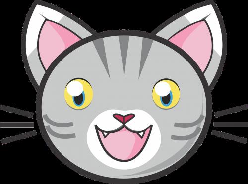gray tabby cat grey tabby tabby