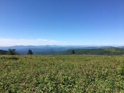 grayson highlands virginia meadow
