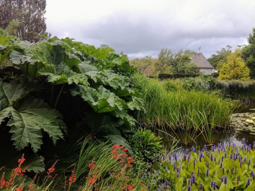 great dixter pond garden