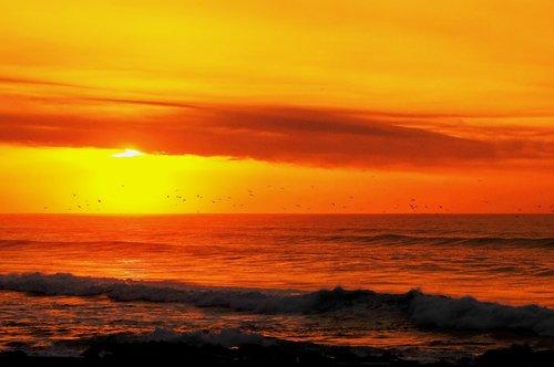 great prints philippines  george paris  golden sunset
