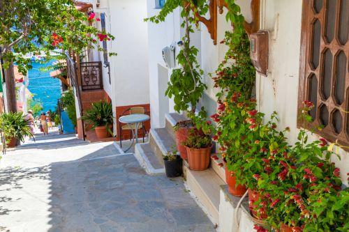 Greek Street With Flowers