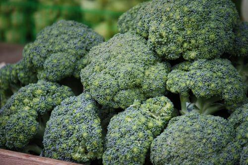 green broccoli healthy