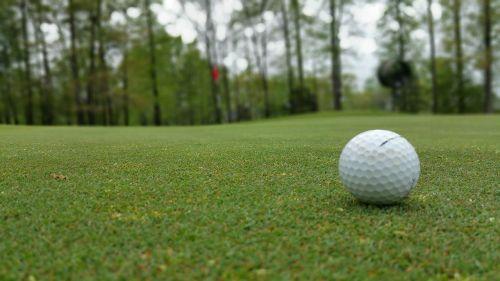 green grass golf