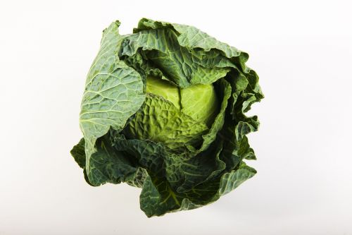 green cabbage power
