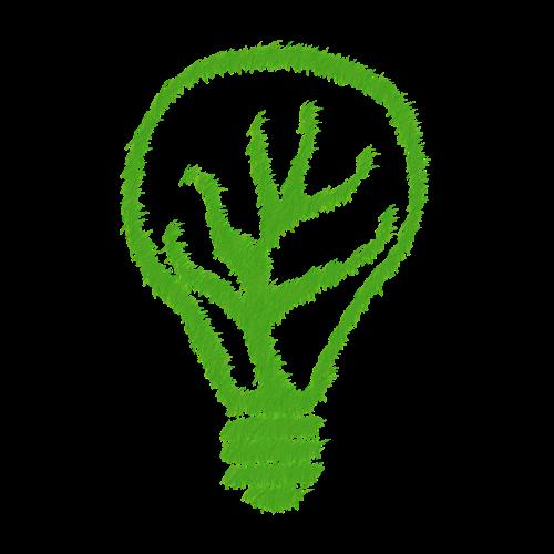 green ecology echo