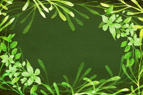 green  plants  frame