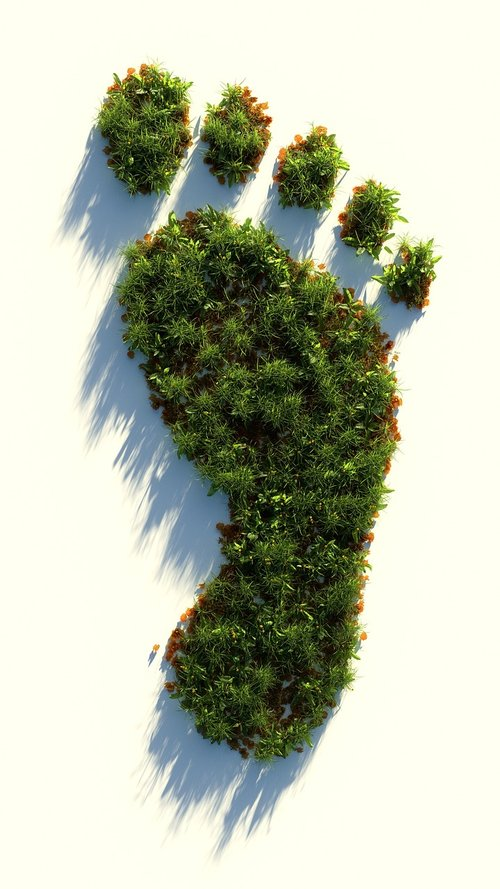 green  healthy  footprint