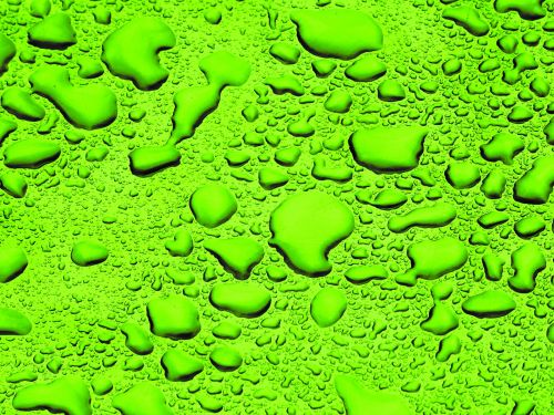 Green Background Water Droplets
